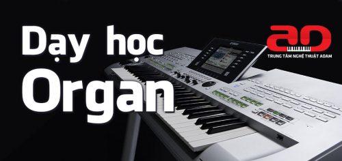 Khóa học đàn Organ tại trung tâm nghệ thuật Adam