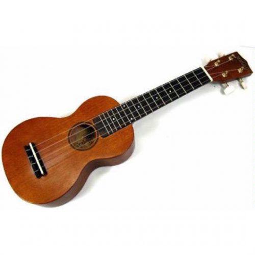 Học đàn ukulele và những lưu ý khi học