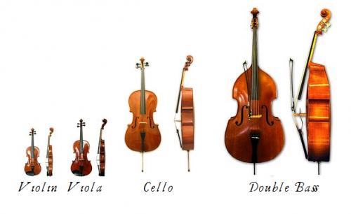 Bộ string – bộ đàn dây