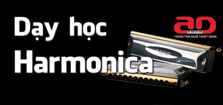 Khóa dạy học kèn Harmonica - Số 1 Hà Nội về chất lượng dạy