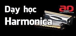 Day hoc Harmonica